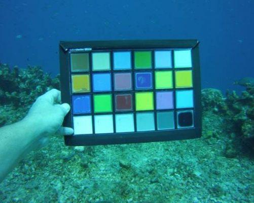 Sealife Reefmaster RM4K